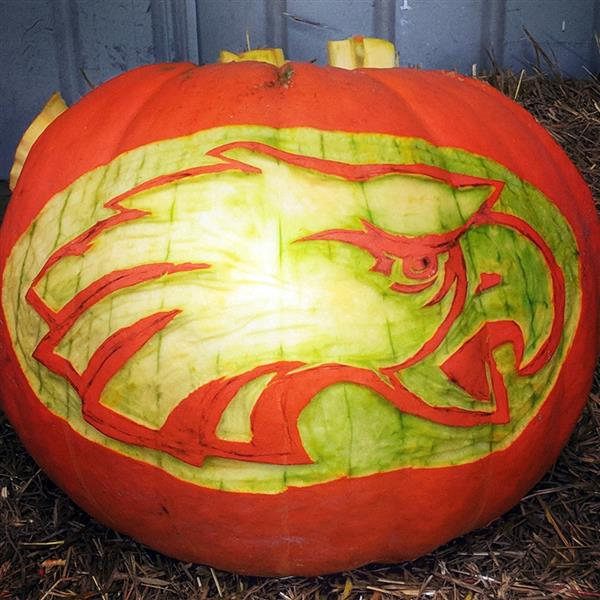 Carving for a Cause