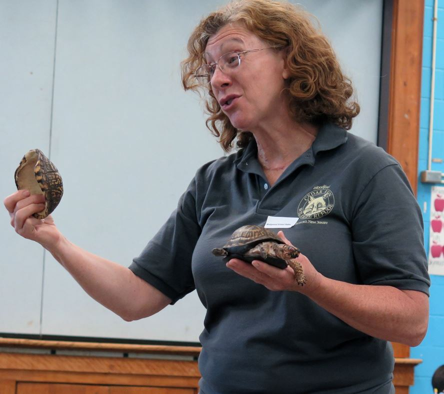 Wildlife Lesson Comes to Wedgwood