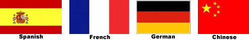 Foreign Language Flags